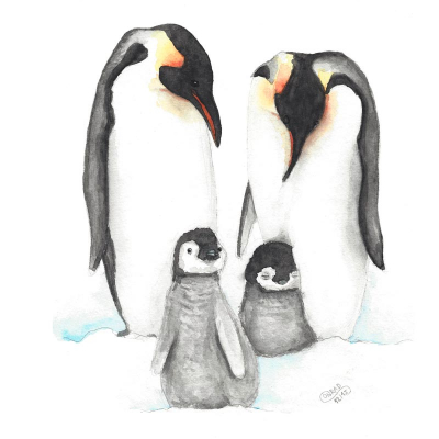 Tierposter Pinguin