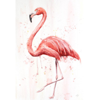 Flamingo Aquarell