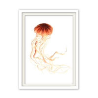 Fineart Tierposter - Qualle